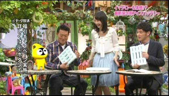 fuji1_20130519